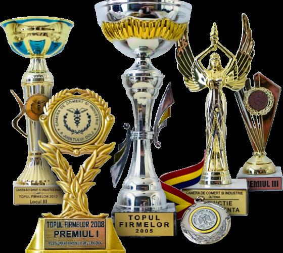 Premii si distinctii Bacolux Hotels